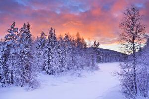 Celebrating Finland's 100th birthday