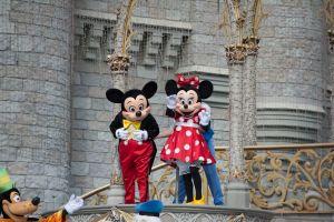 Algérie  Transformation d'un zoo en Disneyland