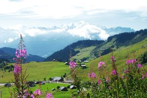 """Savoie: de telles chutes de neige, c'est """"une fois tous les trente ans"""""""