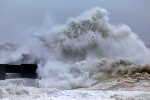 Alerte tsunami: La côte ouest des Amériques en alerte