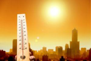 2017 el ano mas caluroso