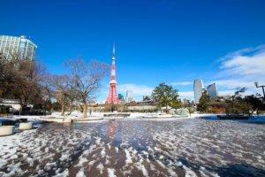 Chutes de neiges: Tokyo dévoile tout son talent