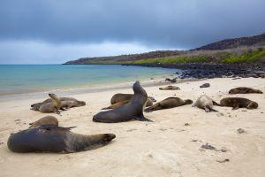 50 merveilles naturelles et culturelles protégées du monde