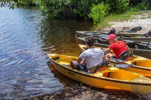 Everglades Nationalpark ein absolutes Muss für Naturfreunde