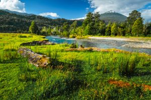 Chile creates five new national parks