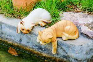 """Ungewöhnliches Erbe: La Romieu, die """"Stadt der Katze"""" entdecken"""