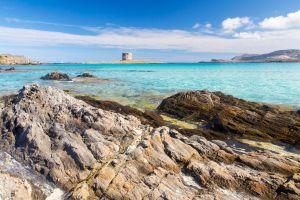 Invasione delle spiagge sarde: il progetto per riqualificare La Pelosa