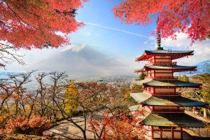 Il Giappone dalla tradizionale festa hanami ai viaggi di nozze
