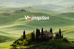 Are you looking for a winery? Then Wineplan, the portal for wine enthusiasts, can help you!