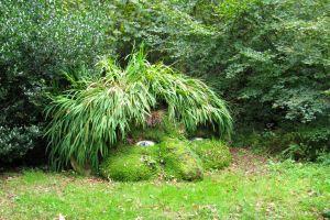 Les jardins perdus de Heligan : une balade magique en famille