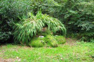 paseo jardines perdidos heligan