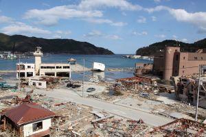 Comment le tsunami de 2011 a transporté des animaux marins du Japon en Amérique
