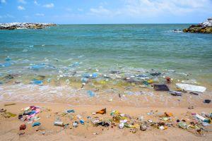 Le continent de plastique du Pacifique fait trois fois la France