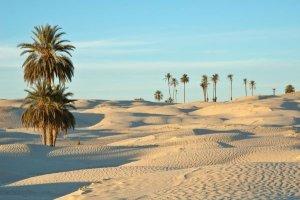 Douz anche nota come la porta del deserto