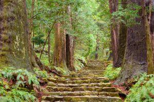 Le Kumano Kodo au Japon : randonnée sur un ancien chemin de pèlerinage