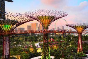 recorriendo jardines increibles mundo