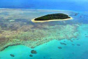 Grande barrière de corail : un investissement suffisant ?