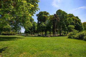 Blank ziehen bei Picknick und einer Runde Yoga in Paris