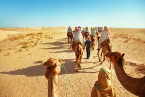 Trekking-Touren  in der tunesischen Wüste müssen Urlauber mit Reiseveranstal machen