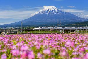 Japon  un train rose bonbon comme Hello Kitty !
