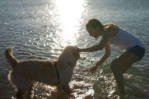 Les astuces pour partir en vacances avec son animal de compagnie