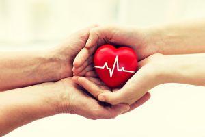 Reise-Tipp Organspendeausweis übersetzen