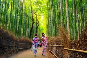 kyoto e la zona Sagano Arashiyama