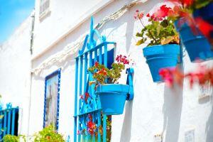 Neue App soll die illegale Vermietung auf Mallorca aufdecken