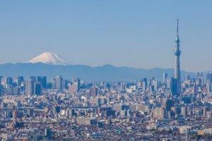 viajar tokio recorrido principales museos