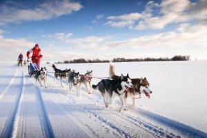 Les meilleures attractions touristiques hivernales