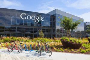 Google debutta nel mondo delle esperienze di viaggio con Touring Bird