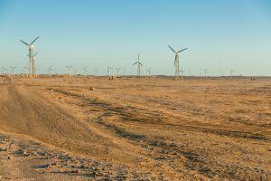 Et si le désert redevenait luxuriant ?