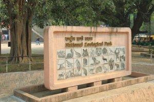 Mystérieuses disparitions en série au zoo de Delhi