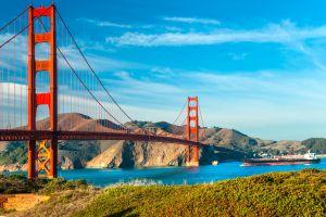 À San Francisco, une application pour traquer les excréments