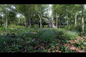 Une cabane en forêt pour un million d'euros