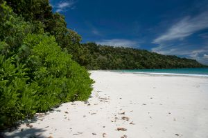 Dans l'océan Indien, une tribu tue quiconque pose le pied sur son île