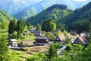 Au Japon, le gouvernement revend des maisons à l'abandon pour une bouchée de pain
