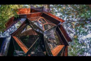 Des cabanes dans les arbres en forme de pomme de pin vendues aux États-Unis