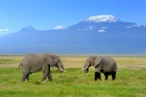 12 months, 12 adventures in Africa