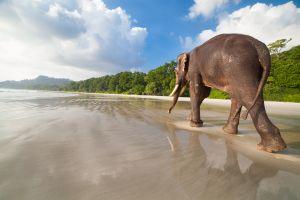 Non la solita isola: 10 destinazioni asiatiche sorprendenti