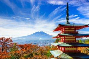 La face caché du Japon raconté par ceux qui le connaissent par cœur