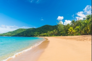 Air Belgium s'envole pour les Antilles