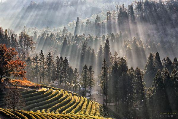 Paysage d'automne en Corée