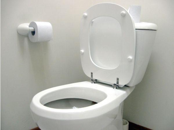 Switzerland's toilet trouble