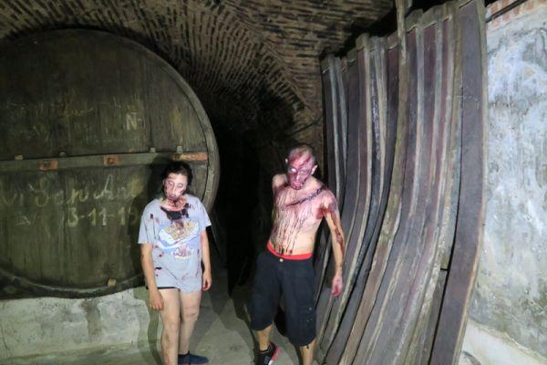Zombis buen vino y mucha diversi n en medina del campo - Spa en medina del campo ...