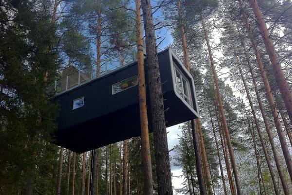 Treehotel - Suède