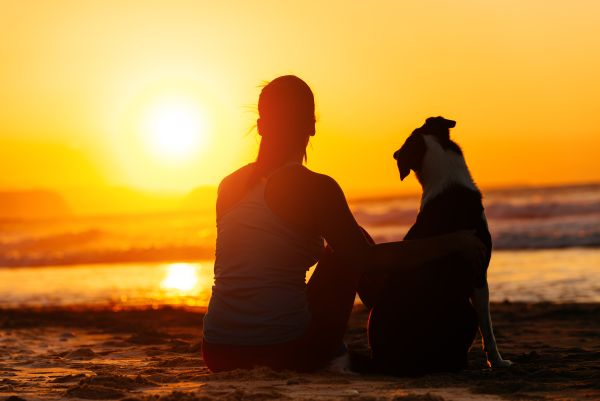 US vacation spots for you and man's best friend