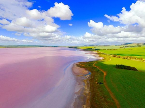 A photo guide to our planet's pink lakes
