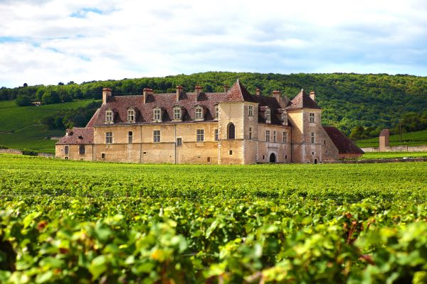 50 of the world's most beautiful wine regions