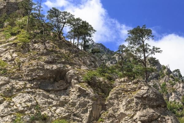 Montagne in Croazia